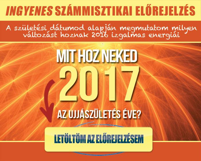 mit_hoz_neked_2017_fekvo_banner